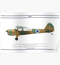 Auster Israel 1 Poster