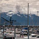 Port of Seward Marina  by John  Kapusta