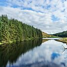 Llyn Brianne Reservoir 2 Wales by Ann Garrett