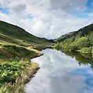 Llyn Brianne Reservoir 3 Wales by Ann Garrett
