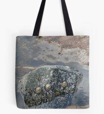 Rockpool Tote Bag