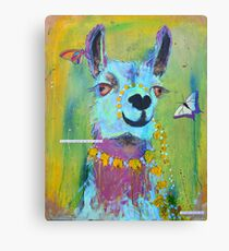 Llama for Hannah Canvas Print