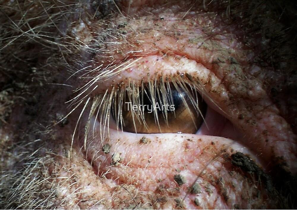 A dirty eye by Teresa Schultz