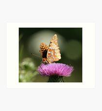 Great Spangled Fritillary-2 Art Print