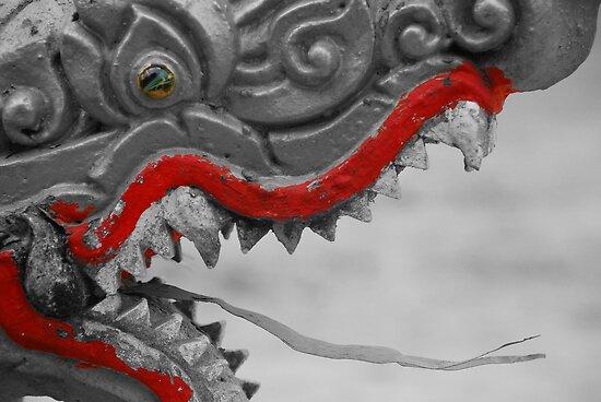 Roar by fritsswanepoel