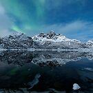 Winter fjord - Norway by Frank Olsen