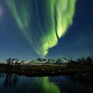 The icy pond - Lofoten, Norway by Frank Olsen