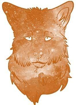 The Orange Wolf By Kaidix Redbubble