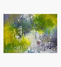 Silver Swamp - Abstract Painting Photographic Print