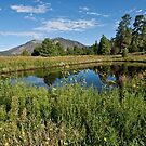 Mountains Reflected in a Pond by Jeff Goulden