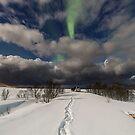 Auroras by the car by Frank Olsen