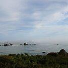 Pacific Coast by mpstone