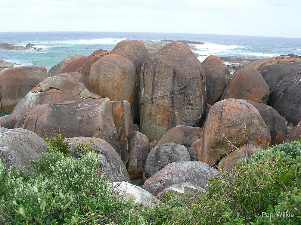 A Herd of Elephant Rocks. Green's Pool, Western Australia by Pam Wilkie