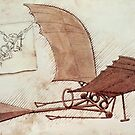 Da Vinci's flying machine by Ednathum