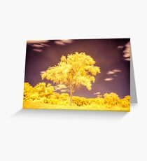 Yellow foliage tree - infrared photography landscape Greeting Card