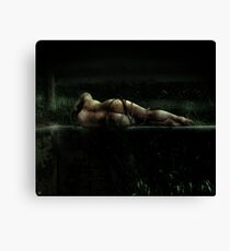 emotional inversion Canvas Print