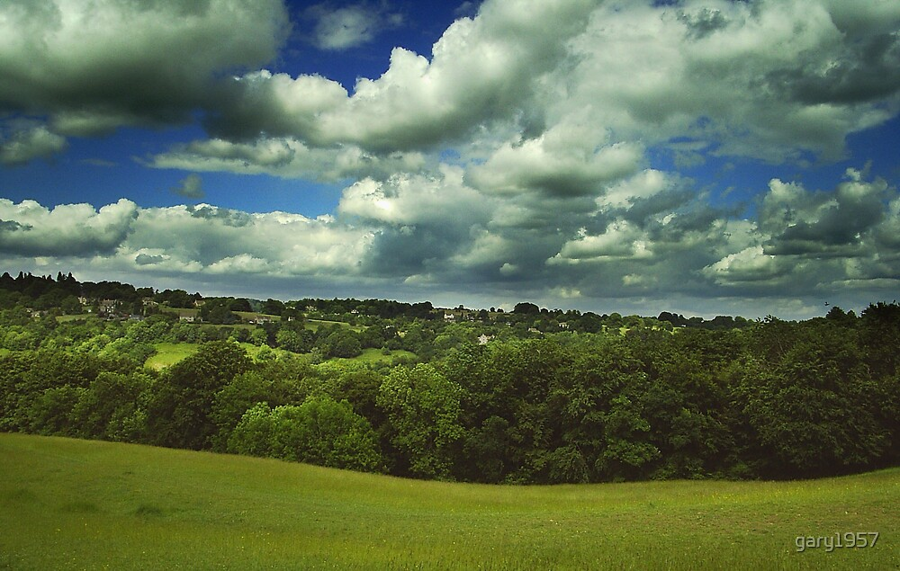 cotswold valley by gary1957