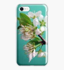 Still Life with Spring iPhone Case/Skin
