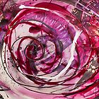 Spirals of Magenta and Black by Gary Hoare
