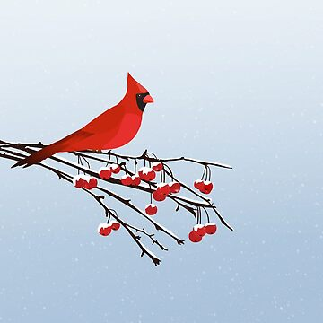 AFE Red Cardinal by afeimages1