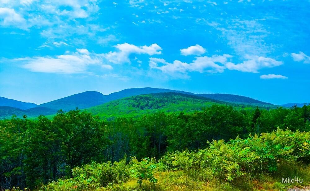 Mt. Cadillac  by Milo4u