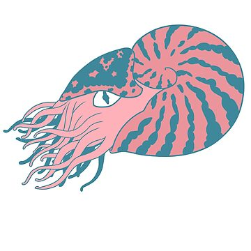 Pink Nautilus by Naivuren