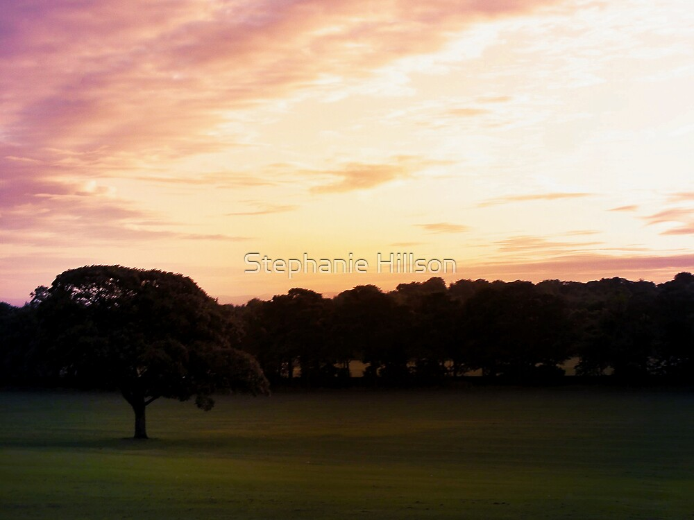 Lonely at Sunset by Stephanie Hillson