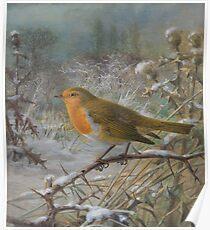 Fuggin' Winter Poster