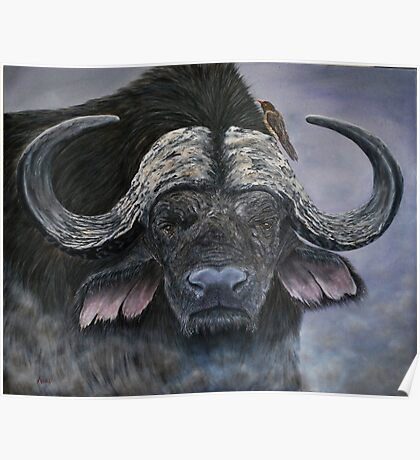 """Danger in the Dust"" - Cape Buffalo oil painting Poster"