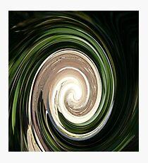 Avian Swirl Photographic Print