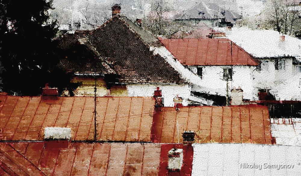 Ploesti Roofs. Romania by Nikolay Semyonov