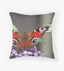 Aglais io, the European peacock Throw Pillow