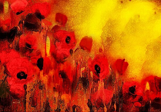 Poppy reverie  by Valerie Anne Kelly