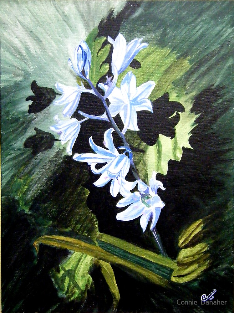 """Bluebells"" by Connie  Danaher"