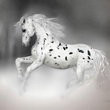 The Appaloosa  by valzart