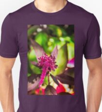 Red tropical flower in a garden in Guatemala T-Shirt