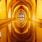 Arches Over the Water by Andy Freer
