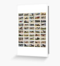 Luxury and personal airplanes from 1930s. Collection of 50  Greeting Card