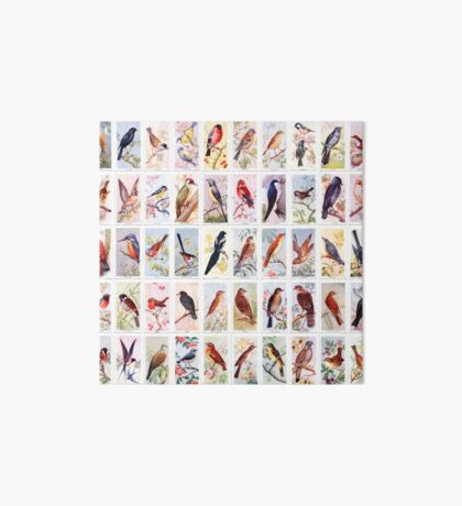 Birds of the Countryside - Set of 50 Art Board