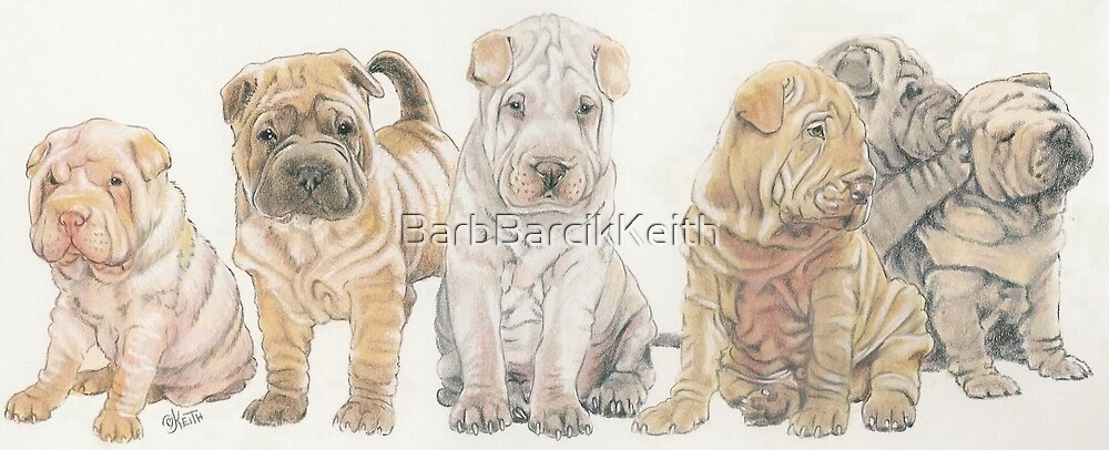 Shar Pei Puppies by BarbBarcikKeith