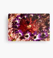 abstract flower macro Metal Print