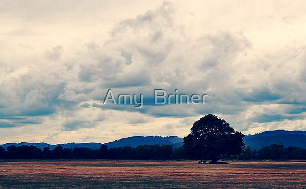Standing Alone by Amy  Briner