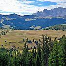 Seiser Alm - Alpe di Siusi by Arie Koene
