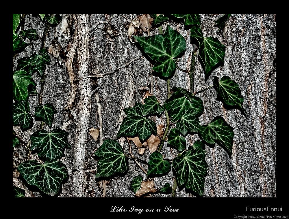 Like Ivy on a Tree by FuriousEnnui