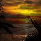 Sunset Palms ~ Pacific Ocean ~ California, USA by Marie Sharp
