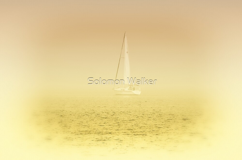 Summer Evening Sailing On The Lake by Solomon Walker
