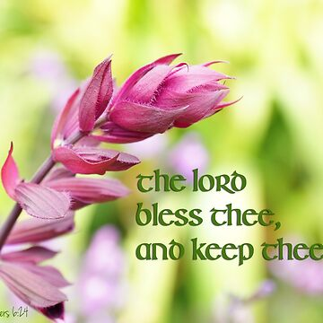 The Lord Bless and Keep Thee ~ Numbers 6:24 by robinclifton