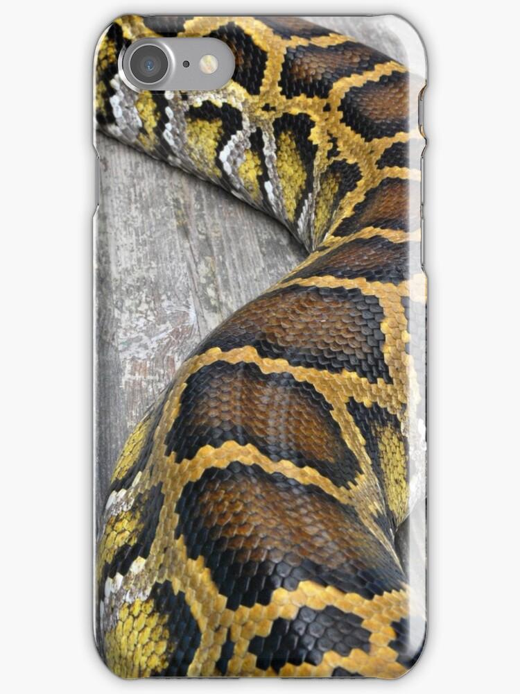 Snake Skin by GreyFeatherPhot