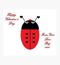 Love Bug (Valentine's Day) Photographic Print