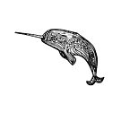 Narwhal Swirl by Hannah Sterry